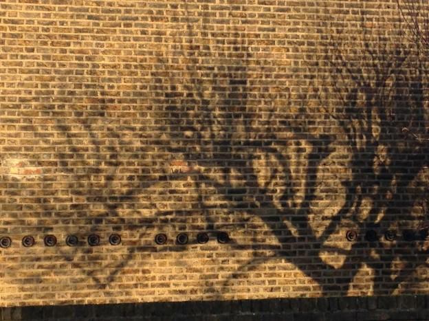 IMG_wall-tree